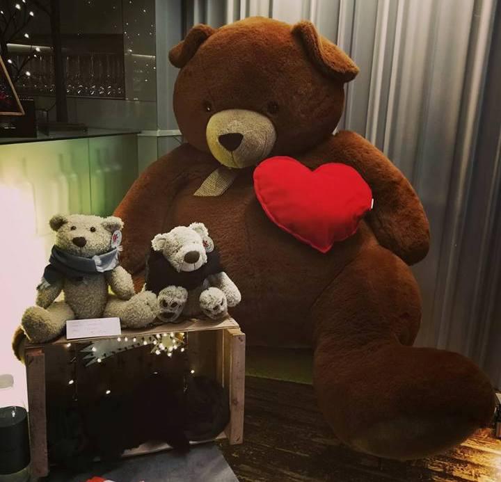 un orso per la vita