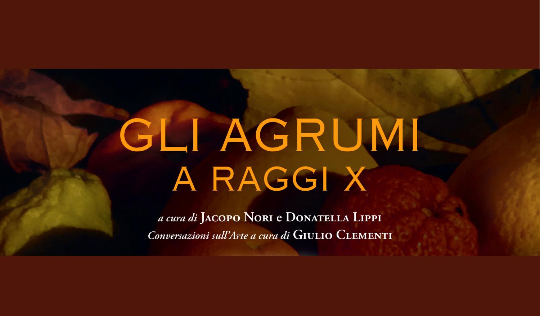 agrumi-banner-copertina